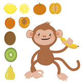 Monkey with banana and fruit set Royalty Free Stock Image