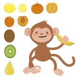 Monkey with banana and fruit set. Cute monkey with banana and fruit set Royalty Free Stock Image