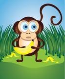 Monkey with Bananas Stock Image