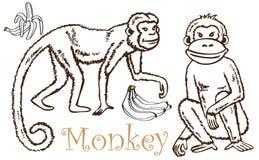 Monkey and Bananas drawing Royalty Free Stock Image