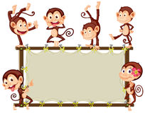 Monkey Banner Royalty Free Stock Image