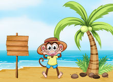 A monkey at the beach and the empty board Royalty Free Stock Photos