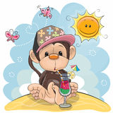 Monkey on the beach. Greeting card Cute Monkey in a cap on the beach Stock Photos