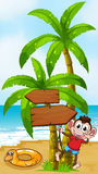 A monkey at the beach playing near the arrow board Royalty Free Stock Image