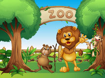 A monkey, beaver and a lion in the zoo Royalty Free Stock Photo