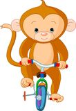 Monkey  on Bicycle. In circus Stock Image