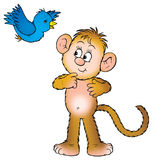 Monkey and bird Royalty Free Stock Photography