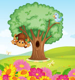 A monkey, a bird and a tree Royalty Free Stock Photo