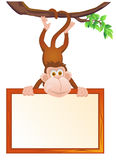 Monkey with blank sign Royalty Free Stock Photos