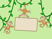 Monkey with blank sign Stock Image