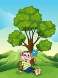 A monkey with a blue flower sitting under the tree Stock Image