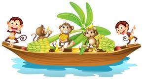 Monkey on boat Royalty Free Stock Photo