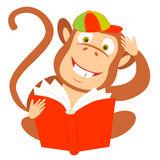 Monkey with a book. Vector illustration of a monkey with a book Stock Photo