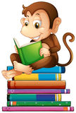 Monkey and books vector illustration