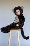 Monkey Boy. Image of cute toddler wearing a monkey costume Stock Images