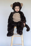 Monkey Boy. Image of cute toddler wearing a monkey costume Stock Image