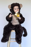 Monkey Boy. Image of cute toddler wearing a monkey costume, eating a banana Royalty Free Stock Images