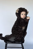 Monkey Boy. Image of cute toddler wearing a monkey costume Royalty Free Stock Photography