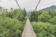 Monkey bridge stock photography