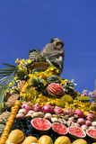 Monkey buffet festival in Thailand. Monkeys are feeding themselves in the annual feast held for monkeys in Lopburi, Thailand. Fruits and vegetables are offered Royalty Free Stock Photography