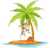Monkey business Royalty Free Stock Photography