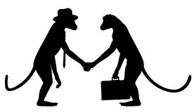 Monkey business Stock Images