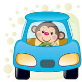 Monkey in a car Royalty Free Stock Photos