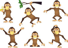 Monkey cartoon character Stock Images
