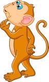 Monkey cartoon thinking Royalty Free Stock Image