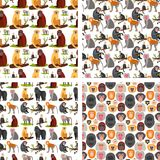 Monkey character animal breads seamless pattern background wild zoo ape chimpanzee vector illustration.
