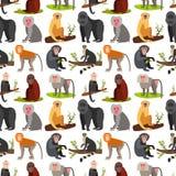 Monkey character animal breads seamless pattern background wild zoo ape chimpanzee vector illustration. Stock Image
