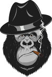 Monkey with a cigar Royalty Free Stock Image