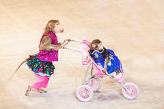 Monkey in circus driven wheelchair with little monkey Royalty Free Stock Photography