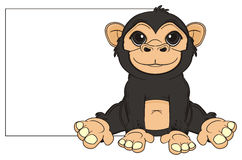 Monkey with clean banner Royalty Free Stock Images