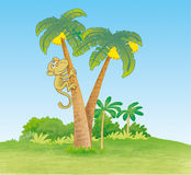 Monkey climbing palm tree. Illustration of a monkey climbing palm tree in jungle Royalty Free Stock Photography