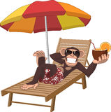 Monkey with a cocktail. Vector illustration, monkey lying on a deck chair and drinking a cocktail royalty free illustration
