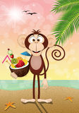 Monkey with coconut drink on the beach Stock Photography