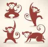 Monkey collection Royalty Free Stock Photos