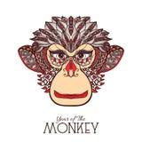 Monkey Color Face Stock Photos