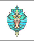 Monkey coloring outlines in boho style. Ethnic hare. Mandrill print