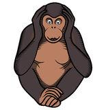 Monkey covers its ears by hands Royalty Free Stock Photos