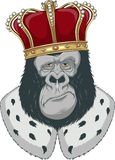 Monkey in a crown Stock Images