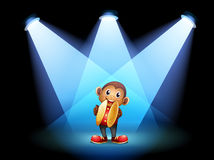 A monkey with cymbals at the stage Royalty Free Stock Photo