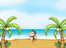 A monkey dancing on a beach Stock Photos