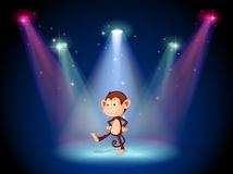 A monkey dancing on the stage with spotlights Royalty Free Stock Image
