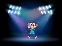 A monkey dancing at the stage with spotlights Royalty Free Stock Photos