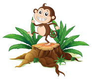 A monkey dancing on a stump with leaves Stock Photography