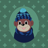 Monkey in a dark blue cap and scarf Royalty Free Stock Photos