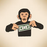 Monkey with dollar Royalty Free Stock Photo