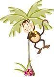 Monkey eating banana in palm tree Royalty Free Stock Image
